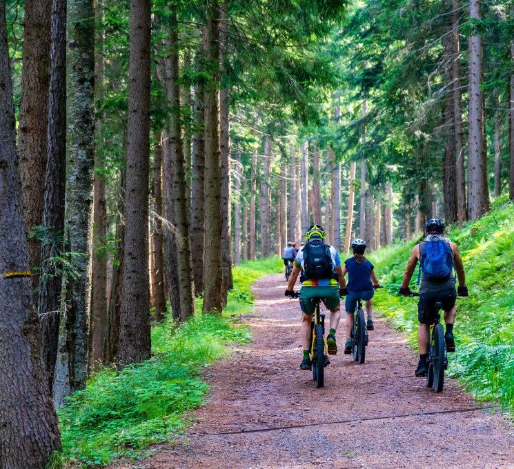 mountainbike_msc_amtzell